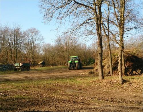Grünschnittsammelplatz im Langenlonsheimer Wald