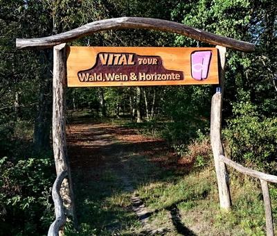 Startpunkt Vitaltour Wald,Wein,Horizonte